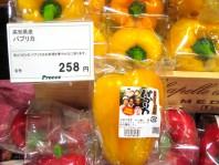 japan-paprika